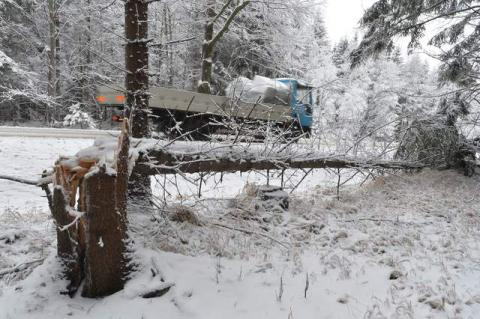 Czech Republic hit by heavy snow; thousands without power