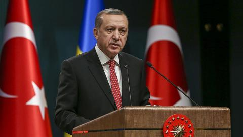 Turkish president: 'Russia's interventions in Syria, Ukraine unjust'