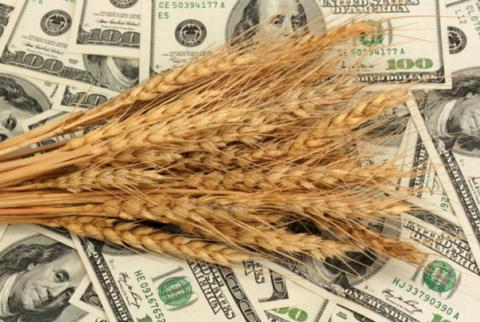 Since start of the agri-year Ukraine exported 27.7 mln tonnes of grain