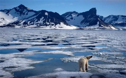 February smashes global temperature record—Nasa