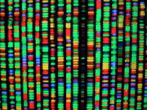 DNA data storage could last thousands of years