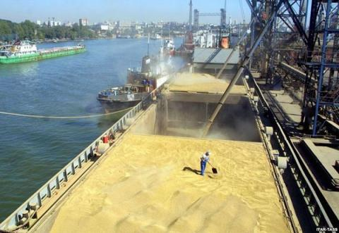 Ukraine exported almost 31 mln tonnes of grain - Agricultural Policy and Food Ministry