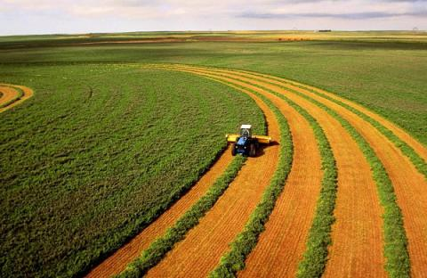 Ukrainian agricultural enterprises received record net profit in 2015 - Ministry of agrarian policy and industry