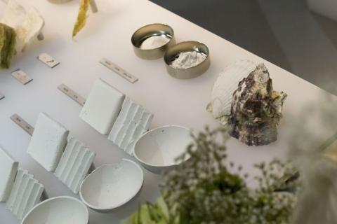 Future of packaging is marine algae (VIDEO)
