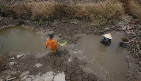 Vietnam crippled by worst drought in nearly a century