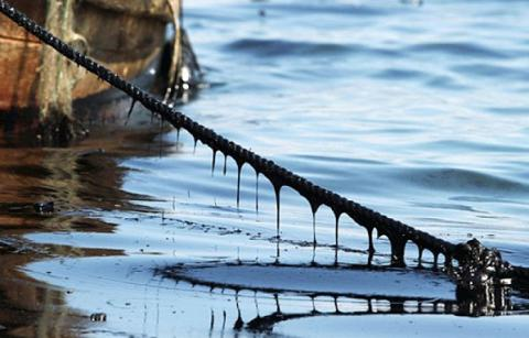 Oil spilled into Black Sea near Sevastopol
