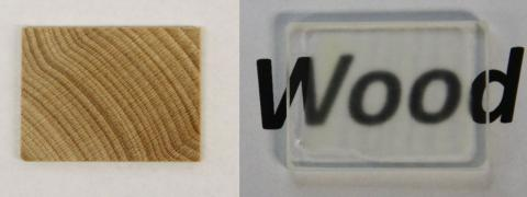 Scientists found way to make wood transparent