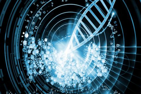 Future computers will store data in DNA