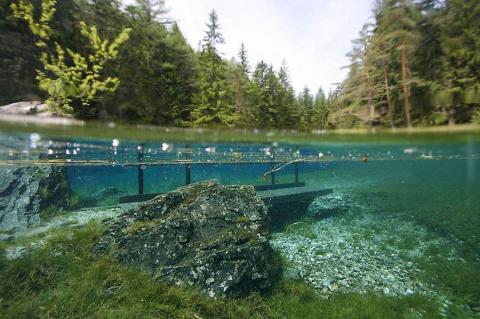 The innovative technology from the Ukrainians: Lviv learned to clean lakes of bacteria