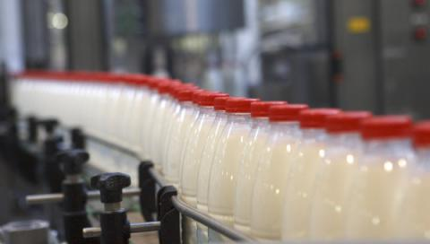 Ukrainian dairy industry suffered a record loss