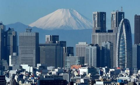 4.9 magnitude earthquake hits Tokyo