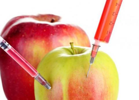 Genetically engineered crops are safe, review of studies finds