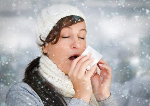 Is It Allergies or a Cold?