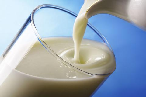 "Ukrainian ""Milk alliance"" started to export dairy products to Bahrain"