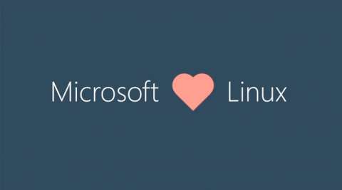 Microsoft joins Linux Foundation in another step toward greater openness