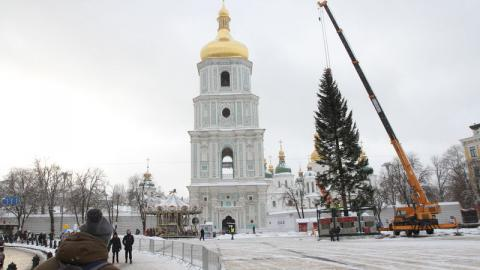 Ukrainian capital installs its record Christmas tree