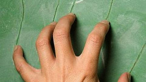 Fingernails on a Chalkboard: Why This Sound Gives You the Shivers