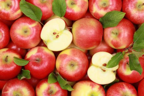 Genetically Modified Apples That Won
