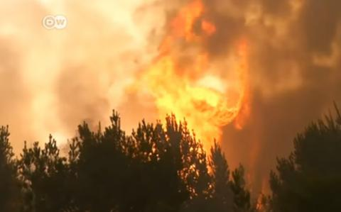 Chile battle worst wildfires in country's recent history (VIDEO)