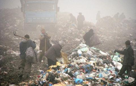 3 companies selected to tender on building of waste recycling plants in Lviv region - Panel