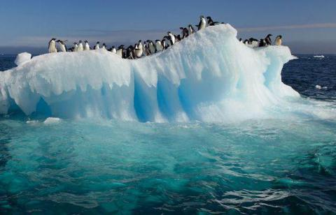 New Record-High Temperatures in Antarctica Are Giving Us Serious Anxiety