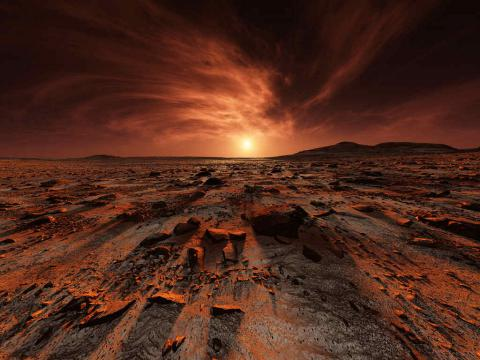Is anything tough enough to survive on Mars?