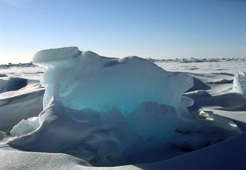 Arctic ice could vanish in summers this century even if govts achieve climat target - Report