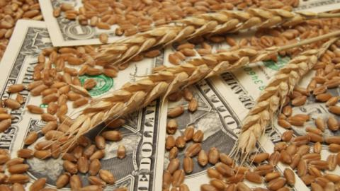 Ukraine exports 2.7 mln tonnes of grain since 2017/2018 MY beginning