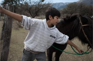 The horse whisperers of Argentina